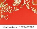 bouquets of a white gypsophila... | Shutterstock . vector #1027457707