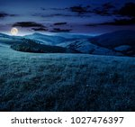 grassy meadow in mountains at... | Shutterstock . vector #1027476397