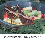 Multiple Butterflies In A Frui...