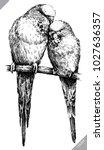 black and white engrave... | Shutterstock .eps vector #1027636357
