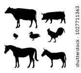 icons for farm animals   Shutterstock .eps vector #1027711363