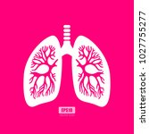 lungs anatomy vector poster...