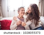 a teenage girl with grandmother ... | Shutterstock . vector #1028055373