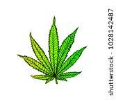 cannabis leaf  marijuana  herb  ...   Shutterstock .eps vector #1028142487