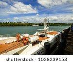 pak bara  thailand   circa... | Shutterstock . vector #1028239153