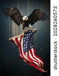 American Bald Eagle Flying Symbol - Fine Art prints