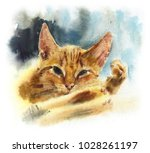 red domestic cat. watercolor... | Shutterstock . vector #1028261197