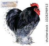 cochin rooster. poultry farming.... | Shutterstock . vector #1028298913