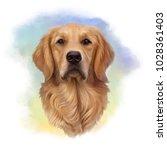 illustration of a golden... | Shutterstock . vector #1028361403