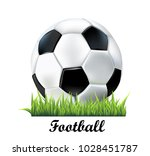 soccer ball in grass  realistic ... | Shutterstock .eps vector #1028451787
