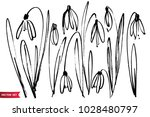 hand drawn with ink brush... | Shutterstock .eps vector #1028480797