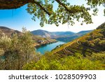 vineyards and the douro river ... | Shutterstock . vector #1028509903