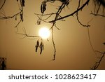 shining gol sun lights ... | Shutterstock . vector #1028623417