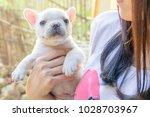 lady carrying cute little... | Shutterstock . vector #1028703967