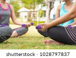 group of people doing exercise... | Shutterstock . vector #1028797837