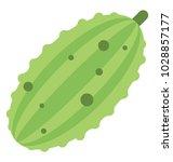 bitter gourd  organic food... | Shutterstock .eps vector #1028857177