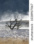 Small photo of Minerva Terrace at Mammoth Hot Springs in Yellowstone National Park, Wyoming