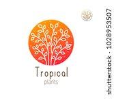 tropical plant logo. vector... | Shutterstock .eps vector #1028953507