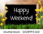 sunny spring narcissus ... | Shutterstock . vector #1028991163