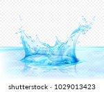translucent water splash... | Shutterstock .eps vector #1029013423