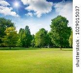bright summer sunny day in park ... | Shutterstock . vector #1029015037