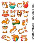 dogs emoji stickers patches... | Shutterstock .eps vector #1029021403