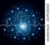 polygonal human heart in low... | Shutterstock .eps vector #1029028303
