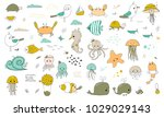 vector set of hand drawn ocean... | Shutterstock .eps vector #1029029143