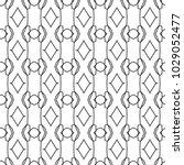 seamless geometric ornamental... | Shutterstock .eps vector #1029052477