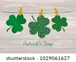 petals of decorative clover... | Shutterstock .eps vector #1029061627