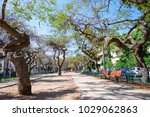 view of boulevard rothschild ... | Shutterstock . vector #1029062863