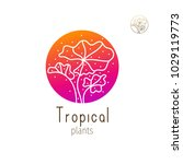 tropical plant logo. vector...   Shutterstock .eps vector #1029119773
