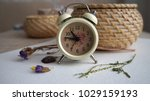 An Alarm Clock  Dried Flowers...