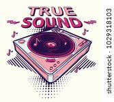 true sound   funky decorative... | Shutterstock .eps vector #1029318103
