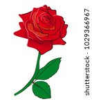 red roses valentines. vector... | Shutterstock .eps vector #1029366967