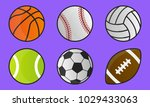 colorful sport balls isolated... | Shutterstock .eps vector #1029433063