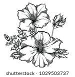 blooming exotic flowers  ... | Shutterstock .eps vector #1029503737