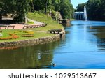 summer national dendrology park ... | Shutterstock . vector #1029513667