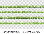 vector realistic isolated green ... | Shutterstock .eps vector #1029578707