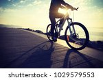 cyclist riding bike in the... | Shutterstock . vector #1029579553
