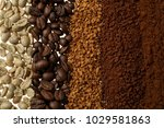 close up of five different... | Shutterstock . vector #1029581863