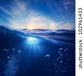 Design Template With Underwate...