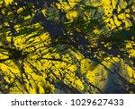 abstract painting. ink handmade ... | Shutterstock . vector #1029627433