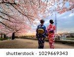 tokyo  japan   april 12  2017   ...   Shutterstock . vector #1029669343