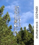 microwave antenna tower on pine ... | Shutterstock . vector #1029680