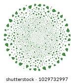 plant leaf fireworks round...   Shutterstock .eps vector #1029732997