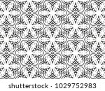 ornament with elements of black ... | Shutterstock . vector #1029752983