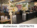 chiang mai  thailand   february ... | Shutterstock . vector #1029786793