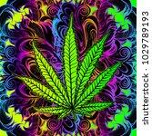 cannabis leaf  marijuana  herb  ...   Shutterstock .eps vector #1029789193