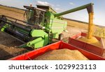 pouring soy bean into tractor...   Shutterstock . vector #1029923113